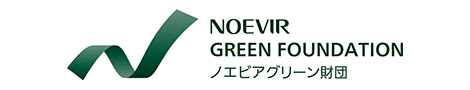 NOEVIR GREEN FOUNDATION